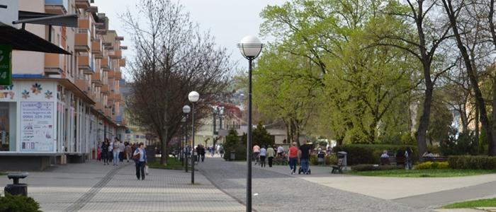 Na území mesta Humenné pribudne 15 paulovnií plstnatých. Vysadia ich zástupcovia miestnych občianskych združení.